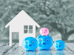 Family debt in bankruptcy